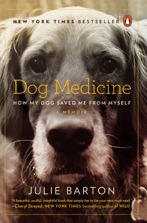 dogmedicine_nytbestseller