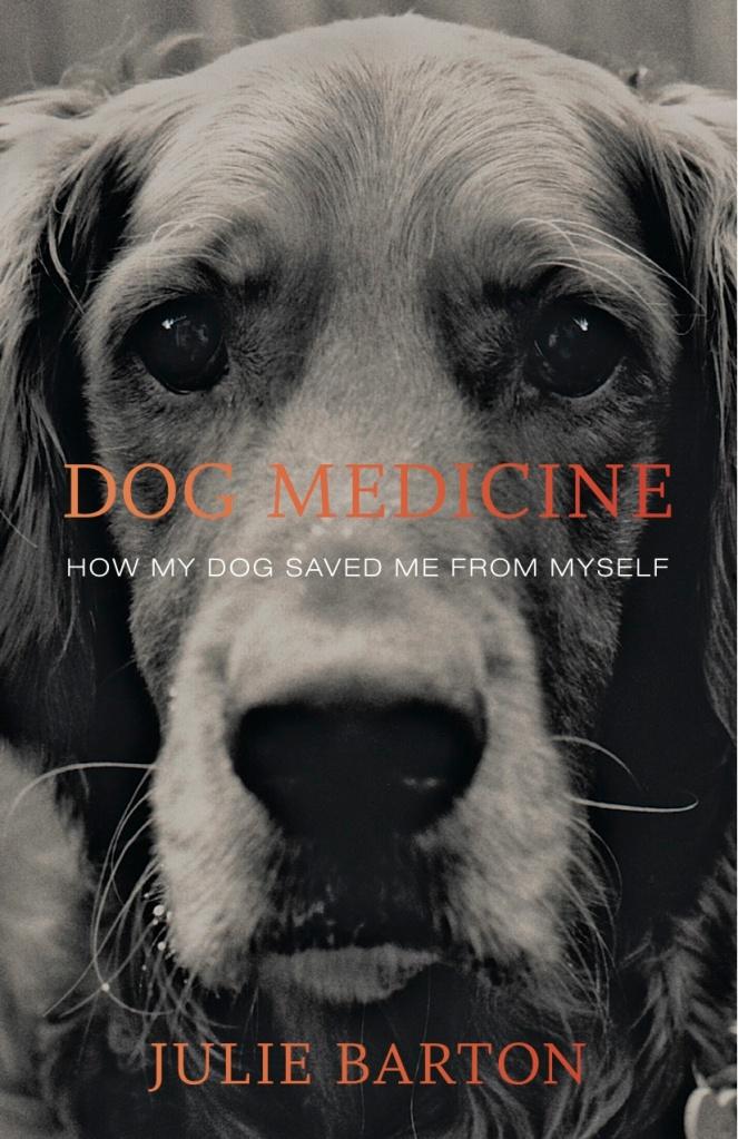 Dog_Medicinecvr